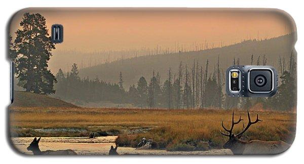 Smokey Elk Crossing Galaxy S5 Case