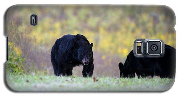 Smoky Mountain Black Bears Galaxy S5 Case