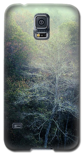 Smoky Mountain Trees Galaxy S5 Case