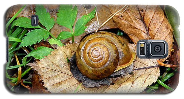 Snail Home Galaxy S5 Case