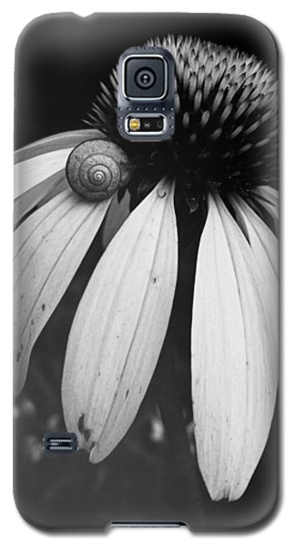 Snail Galaxy S5 Case