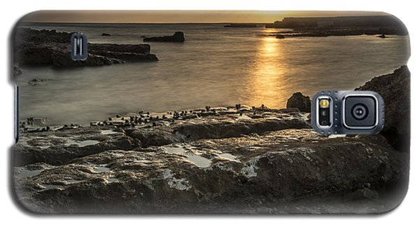 Snails At Sunset Galaxy S5 Case