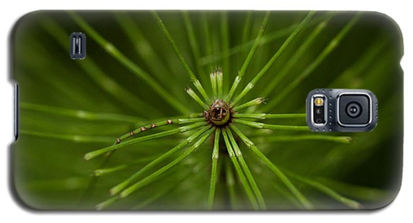 Snake Grass Galaxy S5 Case