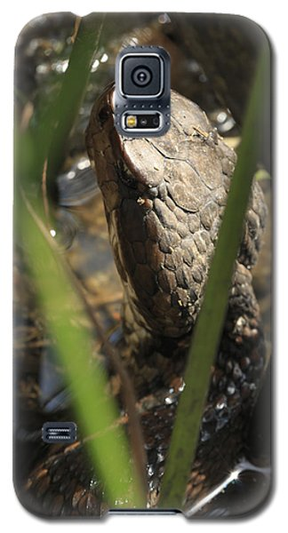 Snake In The Water Galaxy S5 Case