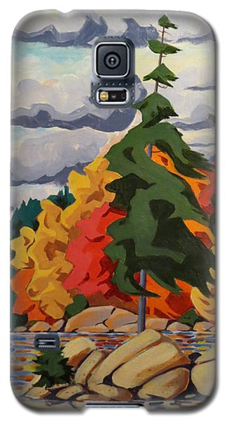 Snake Island In Fall-close Galaxy S5 Case