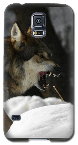 Snarling Wolf Galaxy S5 Case