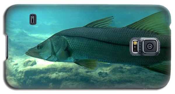 Snook Galaxy S5 Case