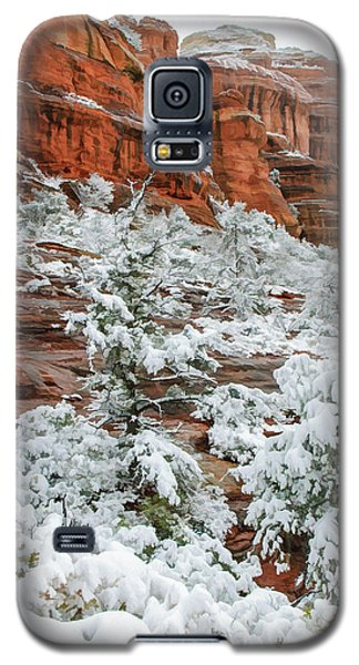 Snow 06-051 Galaxy S5 Case by Scott McAllister