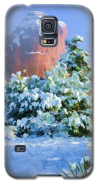 Snow 07-093 Galaxy S5 Case by Scott McAllister