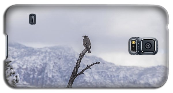 Galaxy S5 Case featuring the photograph Snow Bird by Laura Pratt