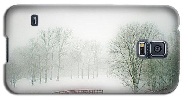 Snow Bridge Galaxy S5 Case