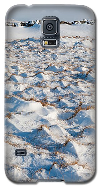 Snow Covered Grass Galaxy S5 Case