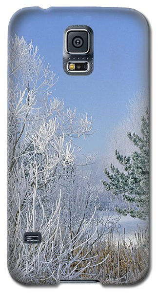 2a357 Snow Covered Trees At Alum Creek State Park Galaxy S5 Case