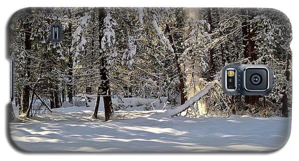 Snow Falling Off Cedars Galaxy S5 Case