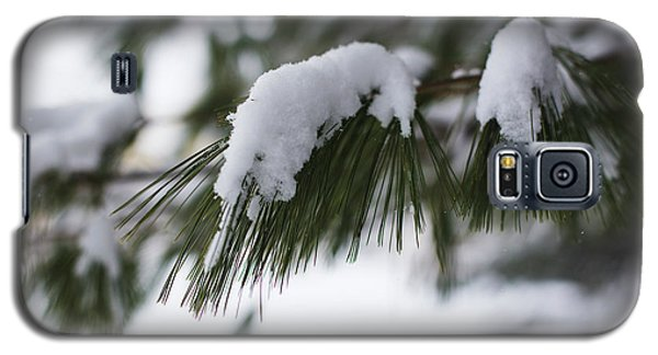 Galaxy S5 Case featuring the photograph Snow Falling On The White Pines by Andrew Pacheco