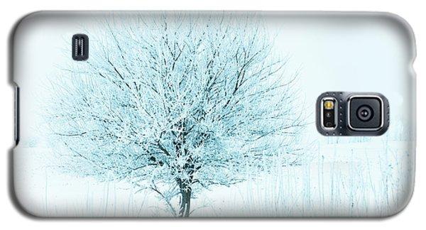 Snow Field Tree Galaxy S5 Case