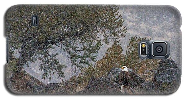 Galaxy S5 Case featuring the photograph Snow Flurry Bald Eagle by Britt Runyon
