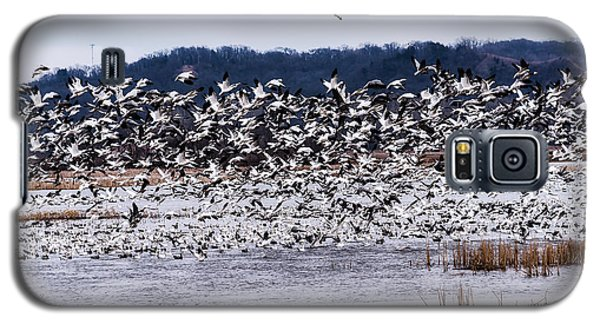 Snow Geese At Squaw Creek Galaxy S5 Case