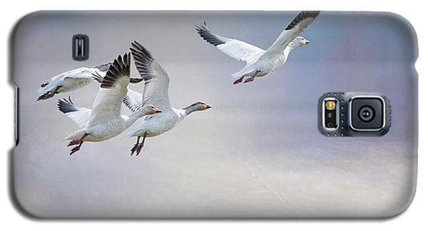 Galaxy S5 Case featuring the photograph Snow Geese In Flight by Bonnie Barry