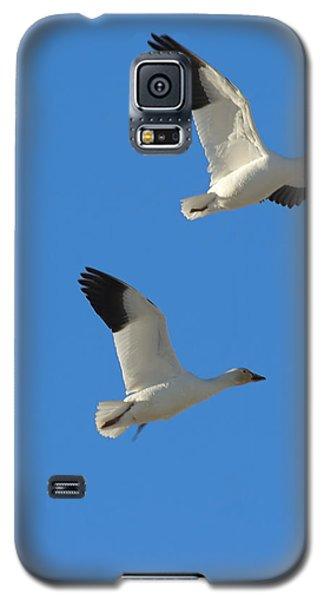 Snow Geese Moon Galaxy S5 Case
