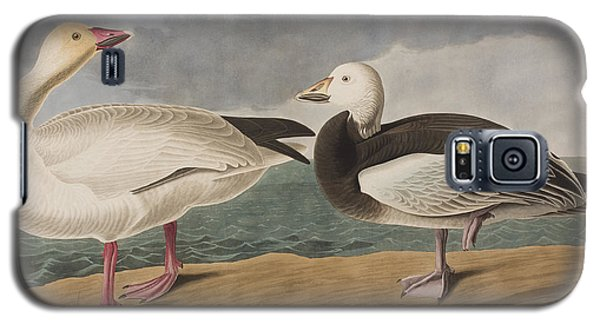 Snow Goose Galaxy S5 Case