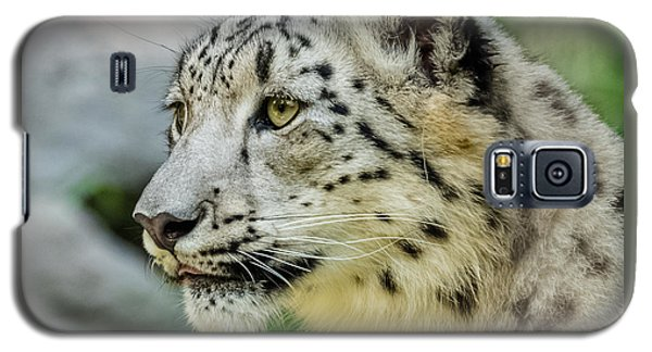 Snow Leopard Portrait Galaxy S5 Case by Yeates Photography