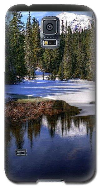 Snow-melt Revelations Galaxy S5 Case