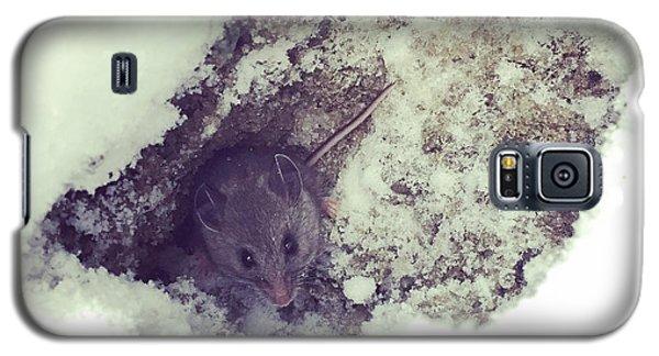 Snow Mouse Galaxy S5 Case