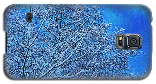 Galaxy S5 Case featuring the photograph Snow On Branches Photo Art by Sharon Talson