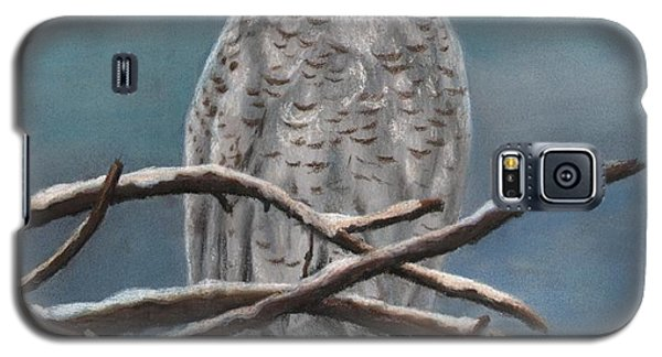 Snow Owl Galaxy S5 Case