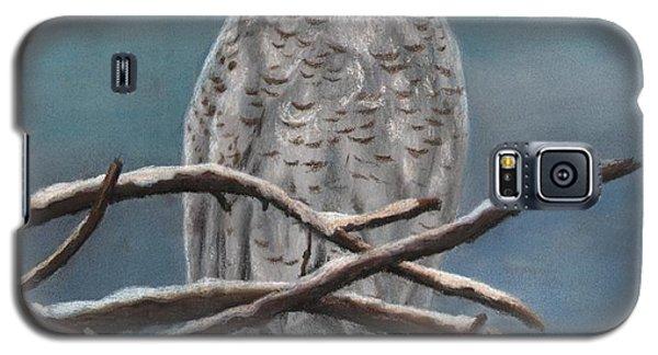 Snow Owl Galaxy S5 Case