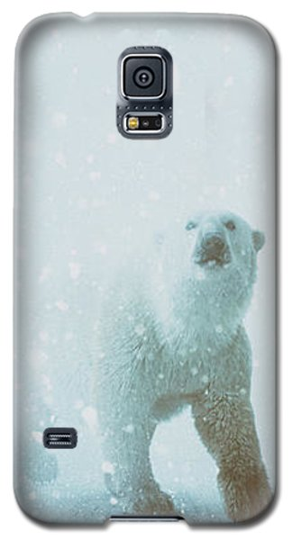 Bear Galaxy S5 Case - Snow Patrol by Katherine Smit