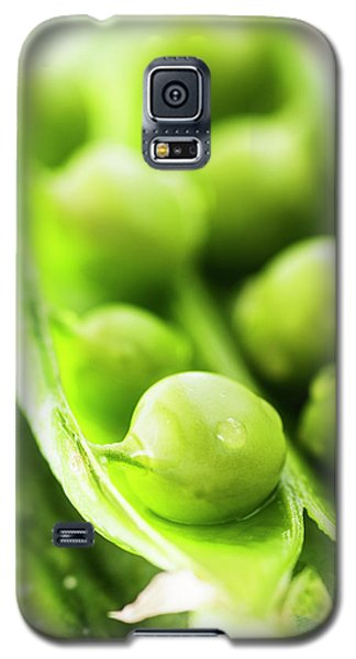Snow Peas Or Green Peas Seeds Galaxy S5 Case by Vishwanath Bhat