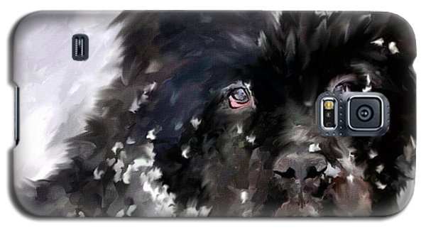 Snow Play Galaxy S5 Case