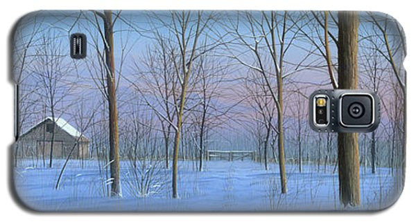 Snow Spectacle Galaxy S5 Case