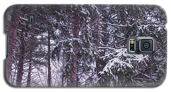Snow Storm On Pines Galaxy S5 Case by Sandy Moulder