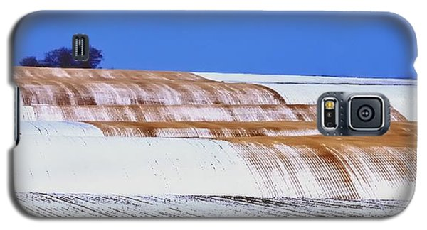 Snow Stubble Tree Line 13955 Galaxy S5 Case by Jerry Sodorff