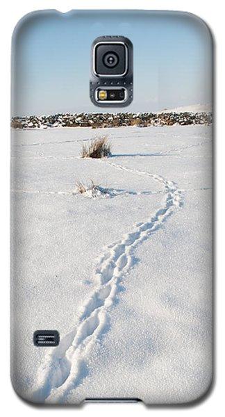 Snow Tracks Galaxy S5 Case