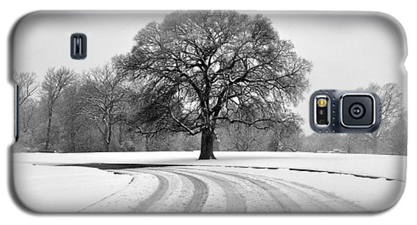 Snow Tree Galaxy S5 Case