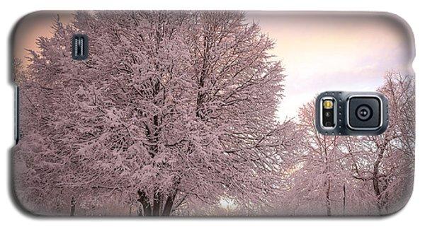 Snow Tree At Dusk Galaxy S5 Case
