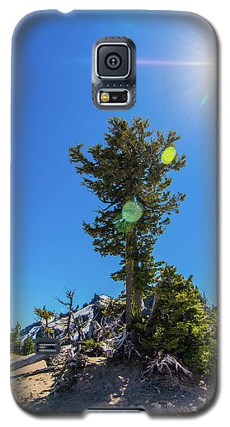 Galaxy S5 Case featuring the photograph Snow Tree by Jonny D
