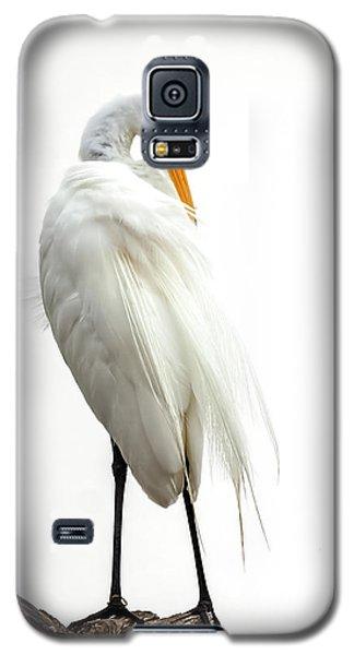 Snow White Galaxy S5 Case