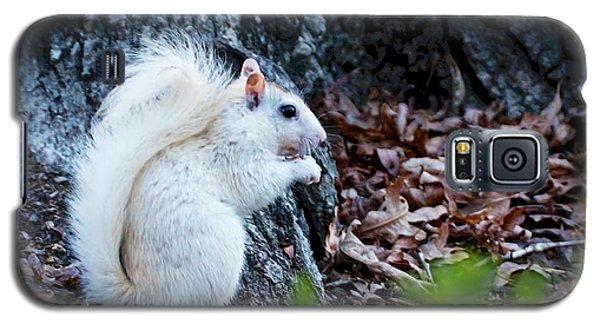 Snow White......squirrel, Galaxy S5 Case