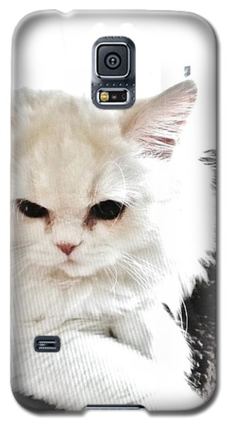 Galaxy S5 Case featuring the photograph Snowball Is 92 Year Old Widows Cat by Marsha Heiken