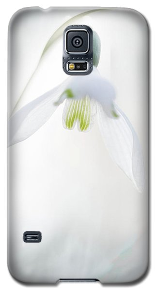 Galaxy S5 Case featuring the photograph Snowdrop A Fragile Hint Of Spring by Dirk Ercken