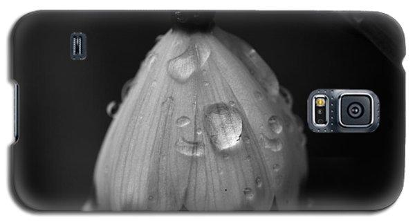 Snowdrop Galaxy S5 Case