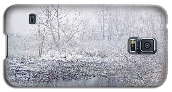 Snowmist Marsh Galaxy S5 Case by Kathi Mirto