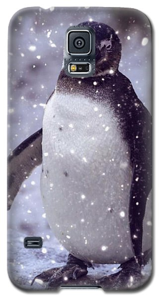Galaxy S5 Case featuring the photograph Snowpenguin by Chris Boulton