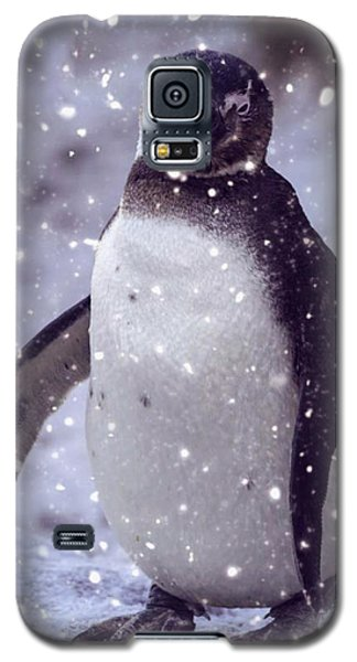 Snowpenguin Galaxy S5 Case