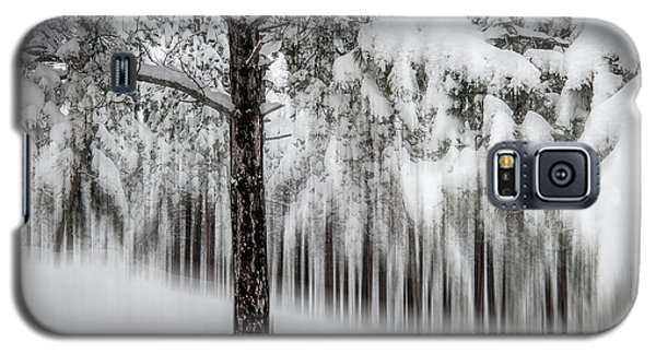 Snowy-2 Galaxy S5 Case